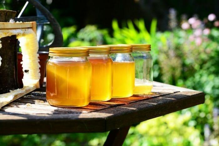 Produkty pszczele w lecznictwie, rodzaje, zastosowanie